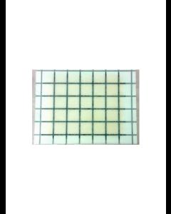Klisterpapir med lokkemiddel i limen (7,7 x 5,8 cm)