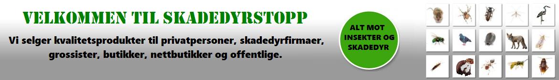 Velkommen til SkadedyrStopp.no